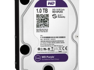 Western Digital Purple Edition 1TB 64MB Cache Internal Hard Drive