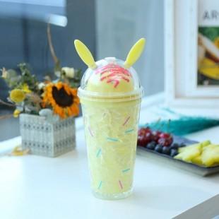 قمقمه آکریلیک دولایه طرح بستنی Double wall acrylic ice cream design tumbler