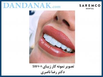 دکتر رضا ناصری