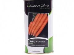 هویج استاندارد نانتس KC