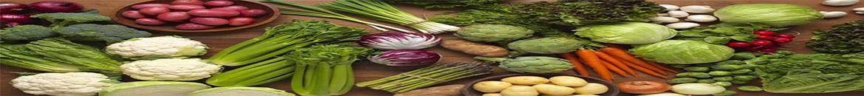 بذر صیفیجات