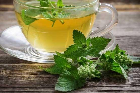 درمان بیماریها با گیاه بادرنجبویه