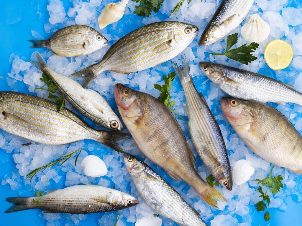 معرفی 10 نوع از لذیذترین وخوش طعم ترین ماهیان جنوب