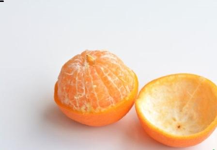نارنگی یافا و بررسی تمام خواص آن