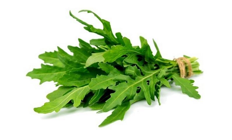 خواص منداب: ۱۱ خاصیت گیاه منداب یا شابانک برای سلامتی