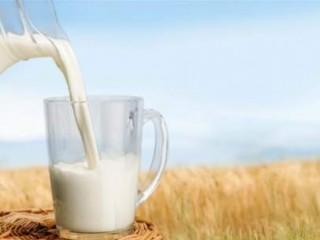 لیست فواید شیر اسب در طب سنتی