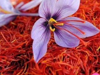 لیست اصلیترین خواص روغن زعفران