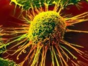 شیوه ای نوین برای درمان موثر سرطان