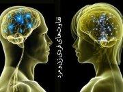 تفاوتهای فردی زن و مرد (1)