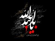 مداحی زیبای رضا صادقی