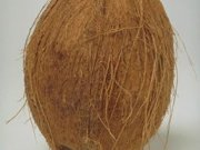 ویدئو : پوست کندن سریع و آسان نارگیل