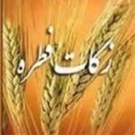 میزان فطریه رمضان ۱۳۹۷ - میزان کفاره رمضان ۹۷