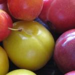 خواص آلو: ۲۱ خاصیت آلو برای سلامتی +عوارض جانبی