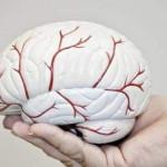 معرفی علائم و علتهای گوناگون ایجاد هیپوکسی مغزی