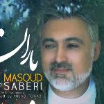 ویدئو :  آهنگ مسعود صابری به نام باران