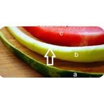 مواد لازم و طرز تهیه مربای پوست هندوانه