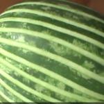 ویدئو :  ویژه شب یلدا - انواع میوه آرایی و تزیین هندوانه شب یلدا