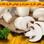 خواص بی نظیر قارچ | مضرات و خواص قارچ خام برای بدن