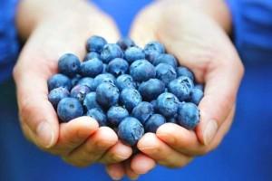 مصرف روزانه بلوبری ریسک بیماری قلبی را کاهش می دهد