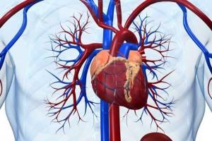 علائم نارسایی قلبی چیست؟