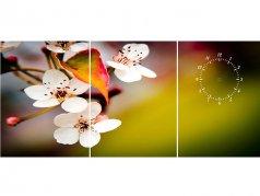 ساعت دیواری تابلوای سه تکه مدل شکوفه سفید