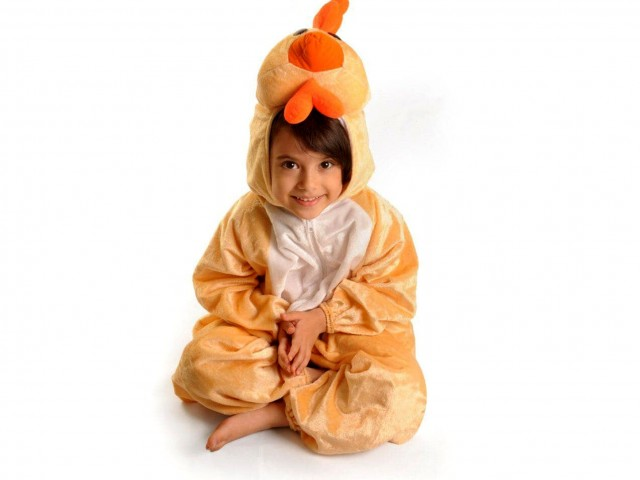 تن پوش مرغ