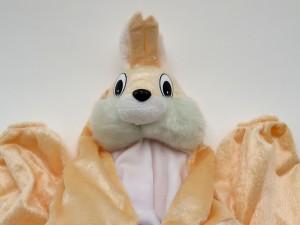 تن پوش خرگوش