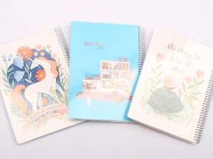 دفتر مشق 100 برگ سیمی جلد دار (تنوع طرح و رنگ)
