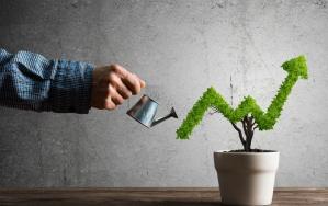 عوامل اصلی موثر در فروش در فروشگاه اینترنتی
