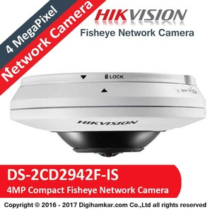 DS-2CD2942F-IS-3