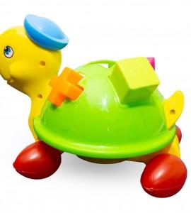 خرید اسباب بازی لاک پشت جایگذاری اشکال