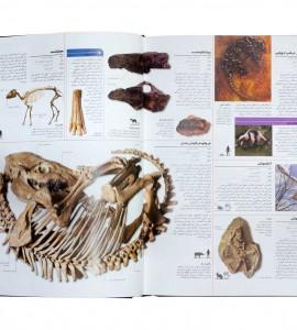 کتاب دایره المعارف دایناسورها