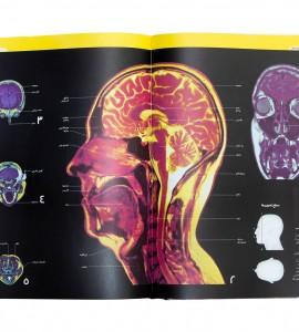 قیمت کتاب دایره المعارف مصور بدن انسان