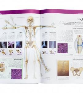 مشخصات کتاب دایره المعارف مصور بدن انسان