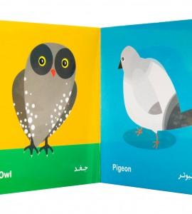 خرید کتاب نوزاد پرنده ها