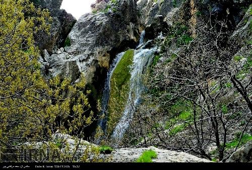 کرونا و گردشگری مجازی در سرزمین آبشارها
