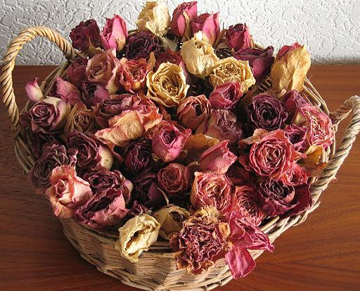روش های خشک کردن گل و برگ