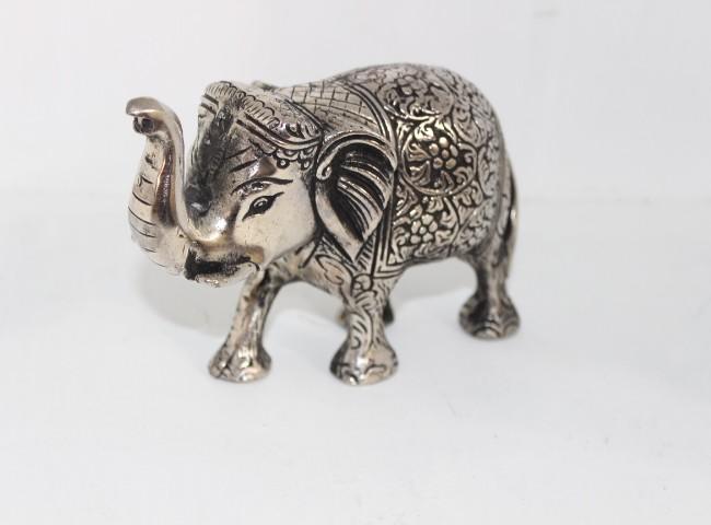 فیل نقره ای بزرگ