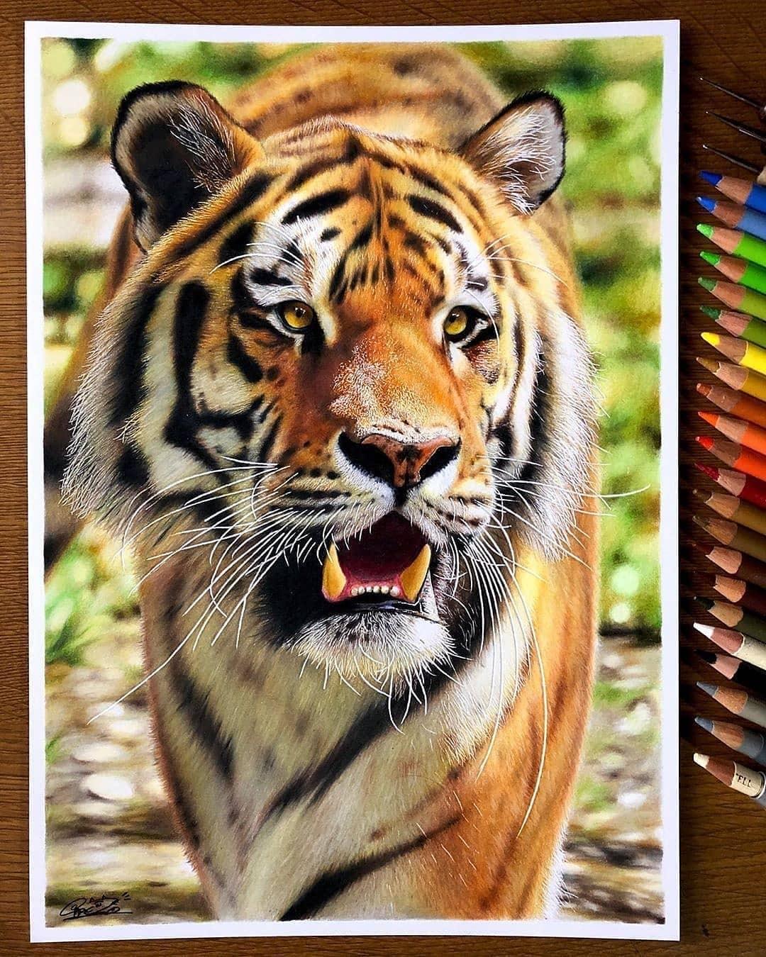 ایده نقاشی مداد رنگی
