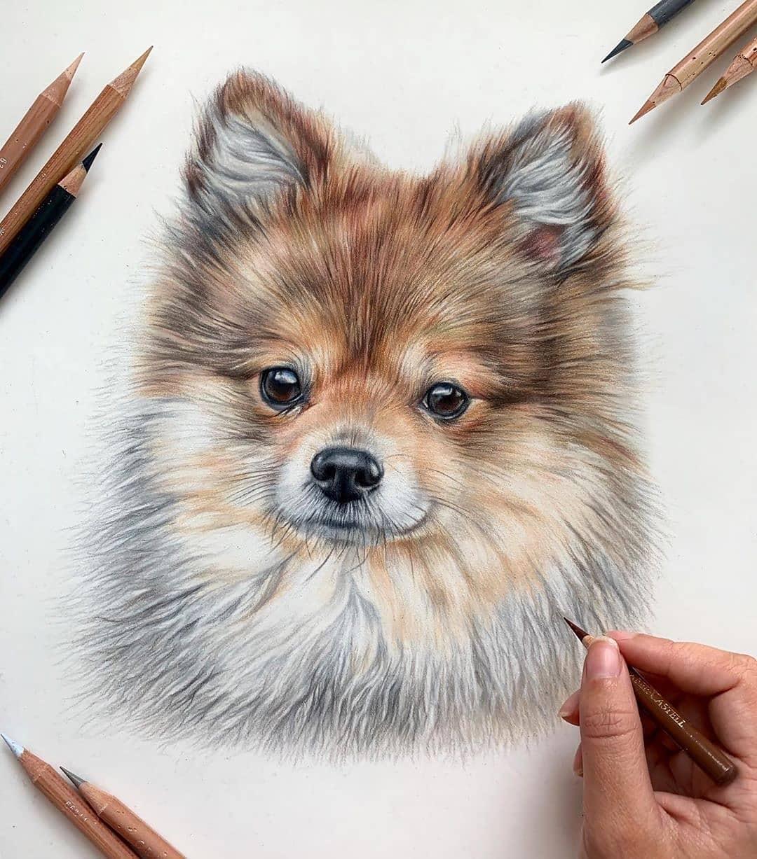 قیمت مداد رنگی فابر کاستل 60 رنگ پلی کروم