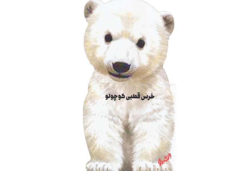 خرس قطبی کوچولو