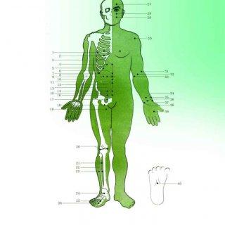 نقاط تعریف شده جهت درمان با دستگاه فیزیوتراپی خانگی فارادیک برجیس