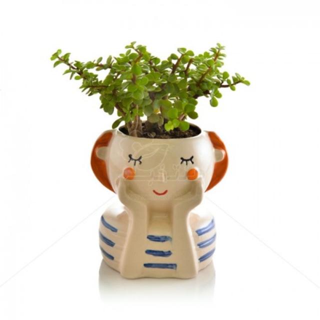 ساکولنت کراسولا خرفه در گلدان سرامیکی طرح دختر ارتفاع 20 سانتیمتر