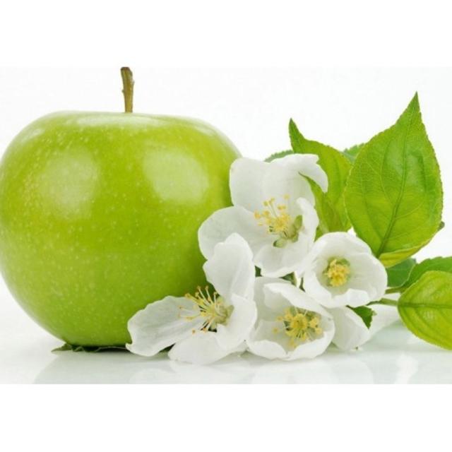بذر سیب