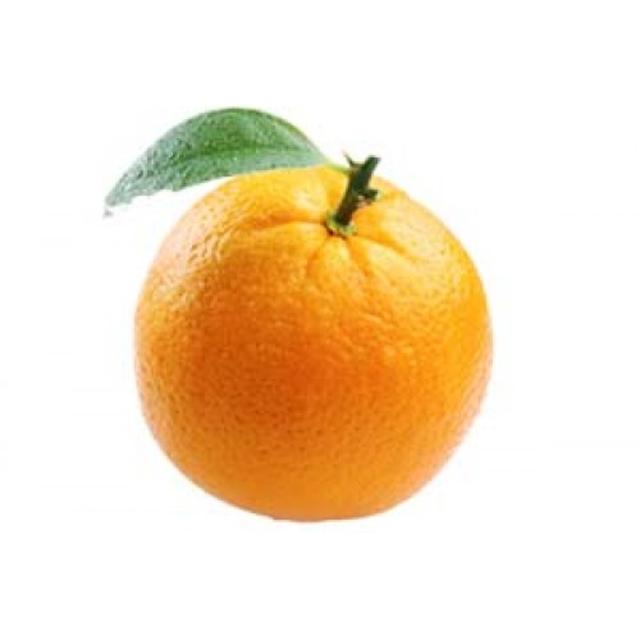 بذر نارنج