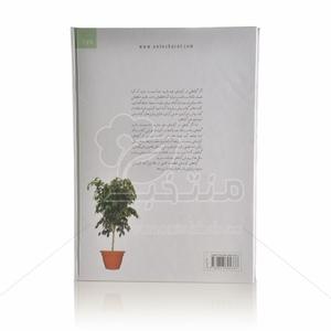DSC_0650 copy-500×500