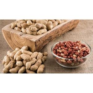 peanuts-liver-500×500