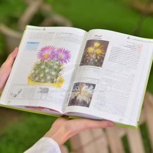 کتاب پزشکی گیاهان خانگی