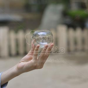 گلدان شیشه ای ساده تراریوم 5.5 سانتی متری (سایز 6)