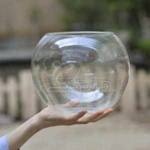 گلدان شیشه ای ساده تراریوم 19 سانتی متری (سایز 1)